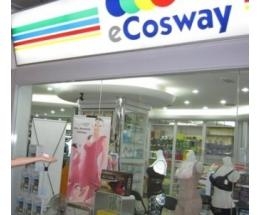 ecosway维迈